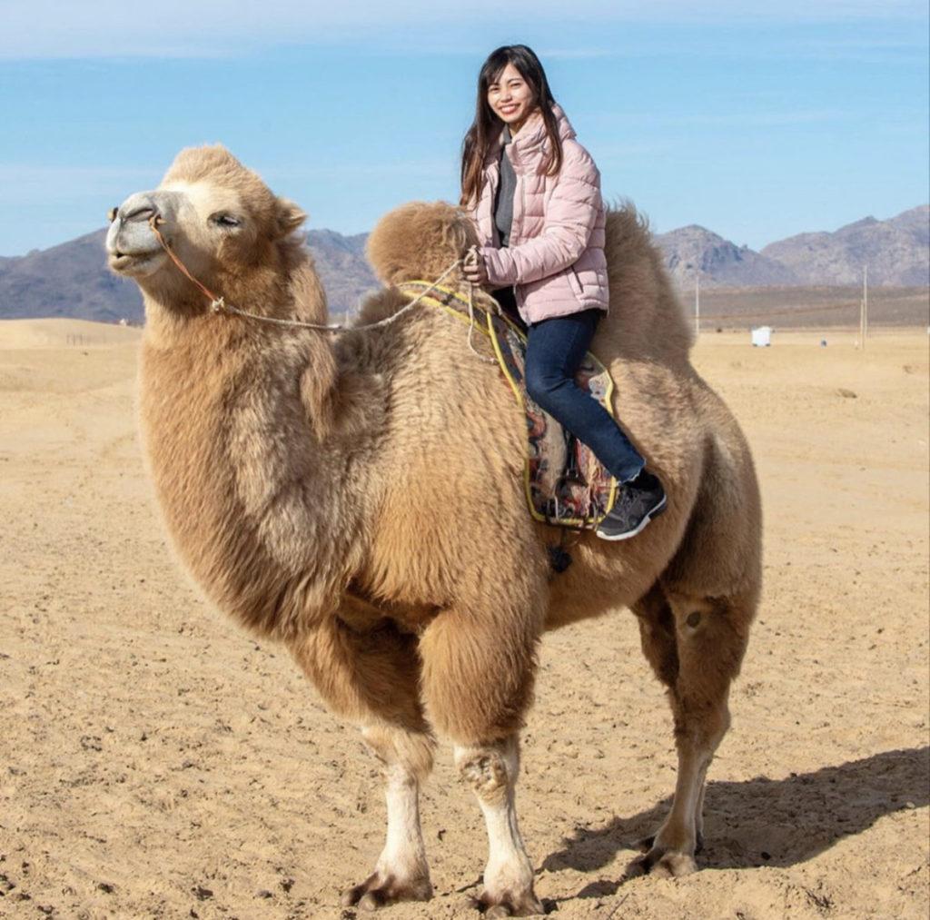 モンゴルでラクダとお散歩。動物と触れ合うのが大好きです。毛がもふもふでとーっても可愛かったです。