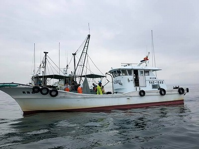 イリコ漁の見学に行ってきました!